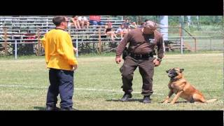 Uspca Region 19 Police Dog Field Trials In Windsor
