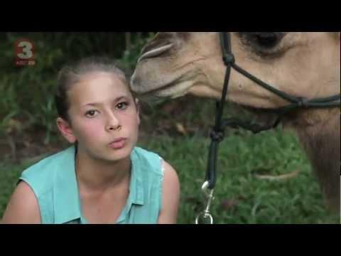 Bindi S Bootcamp Bindi S Scrapbook Camel Episode Clip