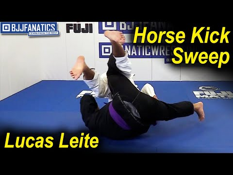 Horse Kick Sweep by Lucas Leite
