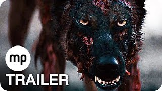 Video CABIN FEVER - THE NEW OUTBREAK Trailer German Deutsch (2016) download MP3, 3GP, MP4, WEBM, AVI, FLV Juni 2017