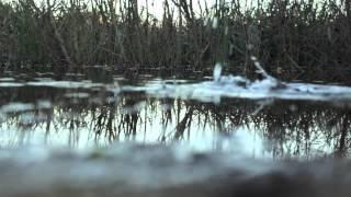 Alex Gopher - Hello Inc. (Devin Remix)