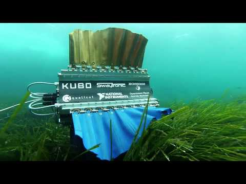 Sepios - Undulating fin robot diving in the sea of France