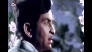 Aaja Sanam Madhur Chandni Mein Hum.........Instrumental