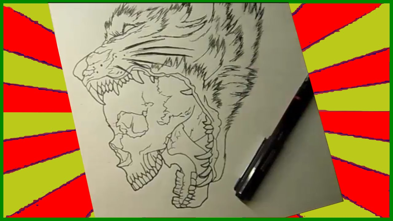 Dibujando 5 lobo y calavera youtube for Calavera lobo