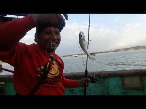 MANCING DI BANGKAI KAPAL PELABUHAN BENOA BALI