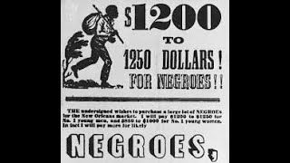 The‌ ‌Big‌ ‌Picture‌ ‌for‌ ‌Negroes‌ ‌(1)‌ ‌ ‌