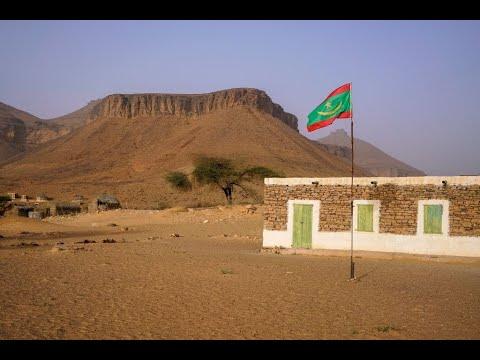 موريتانيا تعتقل 100 أجنبي لمشاركتهم في أعمال شغب  - نشر قبل 3 ساعة