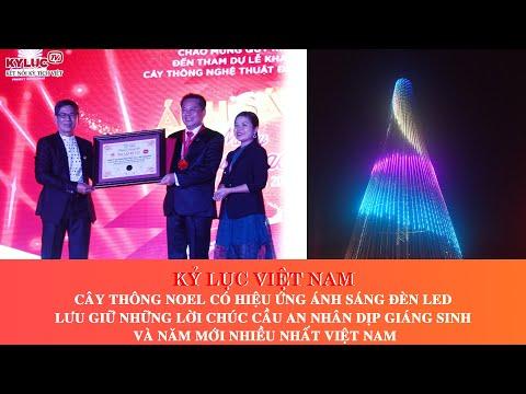 Kỷ lục Việt Nam: Cây thông Noel có hiệu ứng ánh sáng đèn LED lưu giữ lời chúc cầu an nhiều nhất