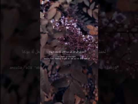 story-wa-1-menit-||-al-kafhi❤