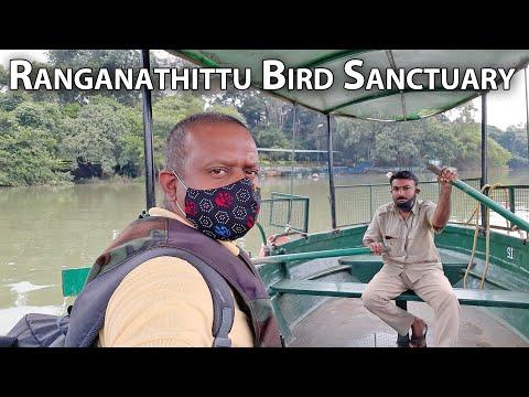 Ranganathittu Bird Sanctuary Srirangapatna Tourism Mandya Tourism Mysore Tourism Karnataka Tourism
