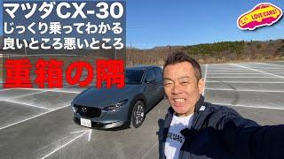 重箱の隅!マツダCX-30編