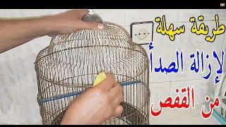 طريقة ازالة الصدأ المتواجد بقفص طيور البادجي How to remove rust from bird cage