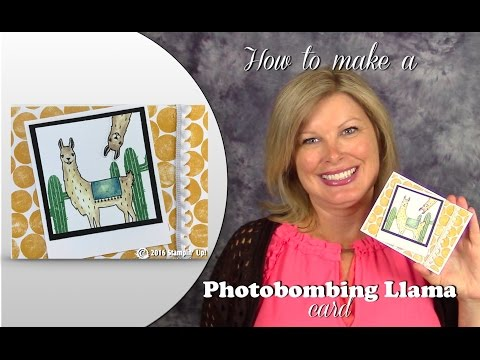 How to make a Photobombing Llama card...