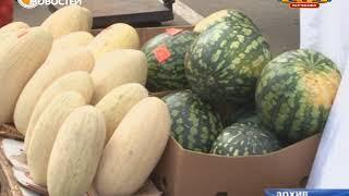 видео «Пермская картошка» появится в магазинах уже в сентябре