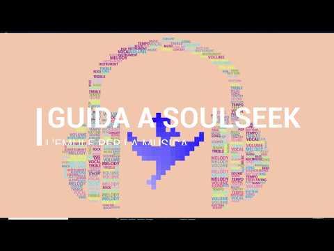 Guida A Soulseek, Il Miglior Programma Per Scaricare Musica Da Internet.