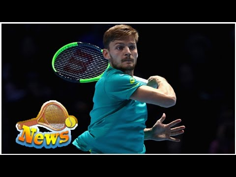 David goffin is looking forward to leading belgium in davis cup final against france
