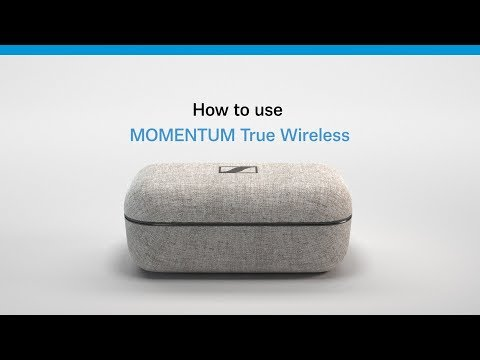 Sennheiser - MOMENTUM True Wireless
