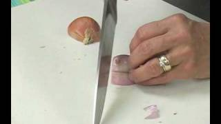 Shallots: How to Buy, Store and Chop Shallots