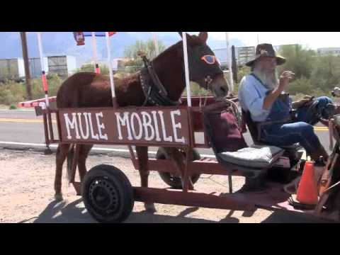 A Tour of Apache Junction, Arizona