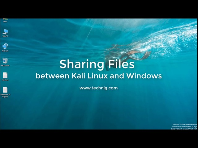 How to Share File between Kali Linux and Windows 10 - Technig