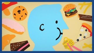 Why are we all getting fat? | Guardian Animations