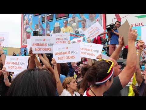 Nathan's Hot Dog Eating Contest Disruption 2015 Bloodied Animal Rights Activists Jump On Stage