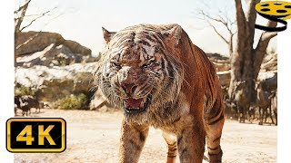 Первая встреча Шерхана и Маугли | Книга джунглей (2016) HD
