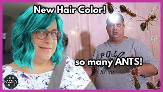new-hair-color-disgusting-ant-invasion