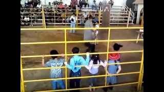 Rodeo de niños en la expo ganadera 2012 con borregos