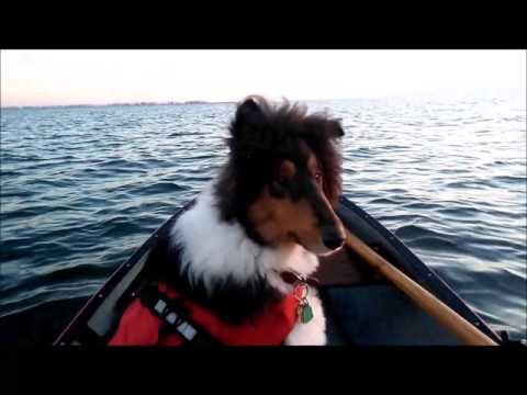 Canoe Tacking strategies video.  How to Canoe in wind and waves.
