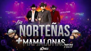 Las Norteñas Más Mamalonas del 2020 (Mix) By Dj Alfred | Con Ese Corazón, Acurrucar, Tu, Basta...