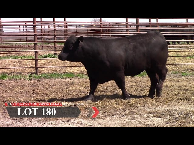 Mead Farms Lot 180