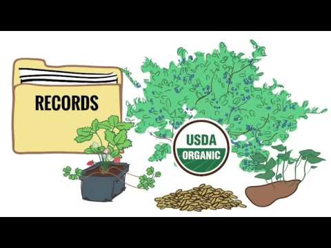 Organic Sound and Sensible Project - What is an Organic Systems Plan