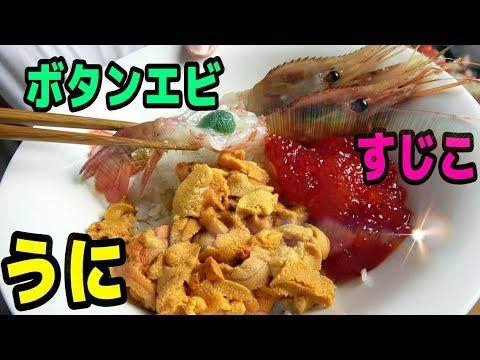 【きまぐれ史上最高額!】最強の海鮮丼作ってみた!【飯テロ】