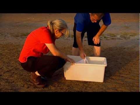 Outback Wildlife Rescue Episode 5