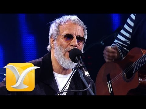 Yusuf Cat Stevens, Where Do The Children...