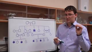 Анализ родословных. Урок 4. Задача 7.2 (быстрый разбор в конце видео)