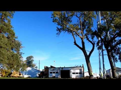 Matt's Tree Service Tree Removal in Tulare, SD