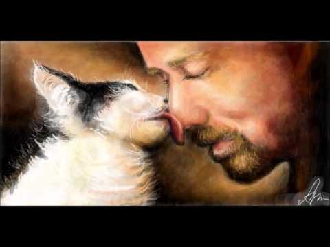 Саша Бест  История про Кошку и ее Человека