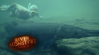 Will Alligator Gars Attack Humans? - River Monsters thumbnail