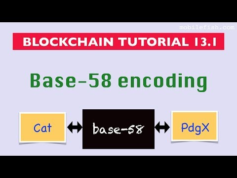 Base58 algorithm  All about cryptocurrency - BitcoinWiki