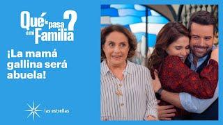 ¿Qué le pasa a mi familia?: ¡Regina y Patricio anuncian que serán papás! | C-85 | Las Estrellas