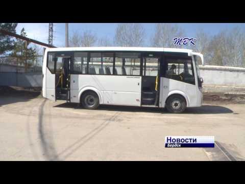 Новые автобусы Павловского автозавода пригнали в Бердск