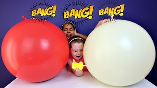 2 Giant Balloons Toy Surprise - Disney Chocolate Eggs - Orbeez - Shopkins - Animal Jam Toy Opening