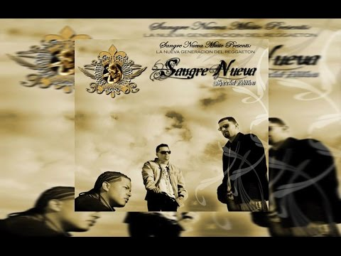 Los Mejores Intros Del Reggaeton- Tempo, Hector El Father, DY Y Más