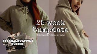 PREGNANCY WEEK BY WEEK  25 WEEKS PREGNANT  PREGNANCY MYTHS amp; MORE