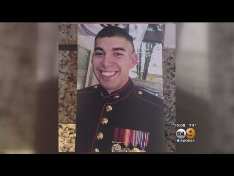 Marine Corps Veteran Stabbed To Death In...