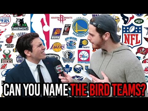 12 Sports Teams Named After Birds... CAN YOU NAME THEM?