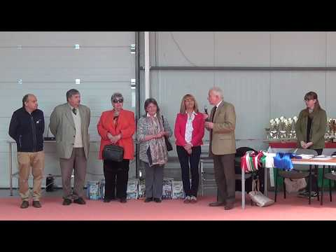 Hungarian Collie Sheltie Corgi Club show. 2017.05.25 Nagytarcsa. Part one.