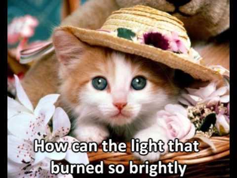 bright eyes+lyrics